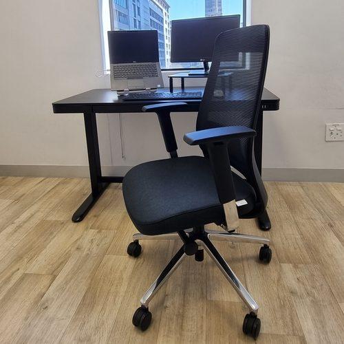 Ergo Exec Ergonomic Chair without Headrest